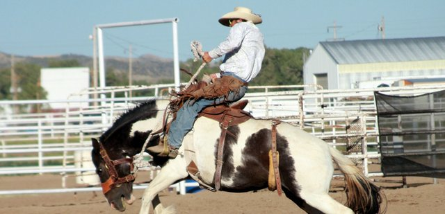 Brett Carroll, of Meeker, rides a bucking bronc with a broken cinch Saturday during Wild West Weekend at the Moffat County Fairgrounds. The inaugural event, which also included a barbecue and a dance, drew an estimated 300 to 400 people, committee member Glenda Bellio said.