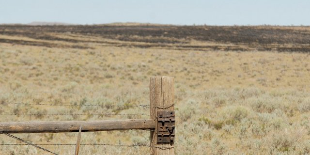 A fencepost stands sentinel over a swath of blackened sagebrush Wednesday morning at Tinneal and Wade Gerber's ranch west of Craig. The Sand Fire burned an estimated 2,000 acres but resulted in no reported injuries, fatalities or structure fires.