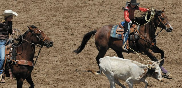 Jaidyn Steele (right) and Mattie Jo Duzik compete in junior team roping at the Moffat County Little Britches Rodeo. Steel and Duzik were one of several teams made up of local children to take part in rodeos over the weekend at the Moffat County Fairgrounds. 
