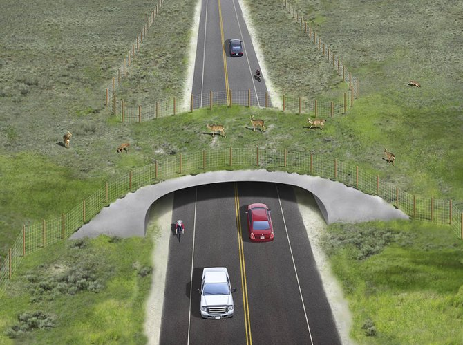 Grand County officials are proposing spending $46 million to build two overpasses and five underpasses to keep wildlife from crossing Colorado Highway 9. The road is used by Routt County residents and visitors traveling to and from Denver.