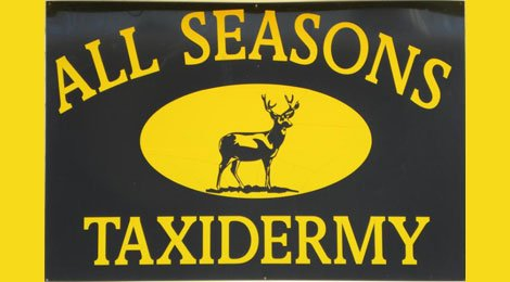 All Seasons Taxidermy