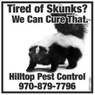Remove Skunks and Pests - Steamboat, CO
