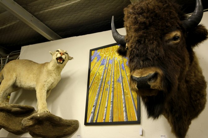 Taxidermy & One of a Kind