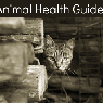 Animal Health Guides