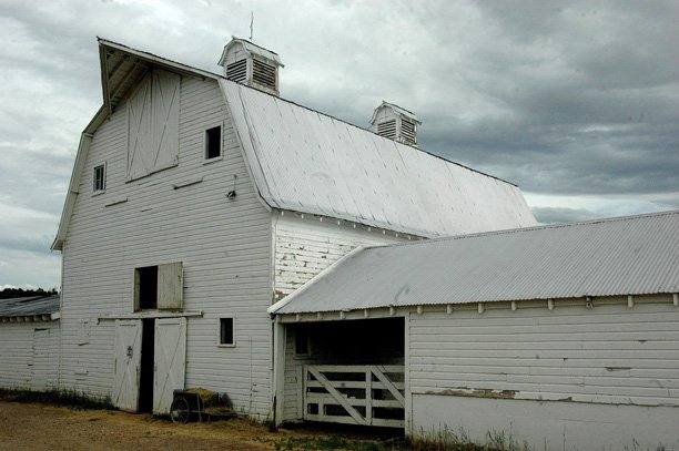 The Seely barn south of Craig on the Yampa River has stood for about 100-years housing dairy cows, show cattle, horses and tons of hay. Dave Seely's father added the three side extensions in the 1950s.