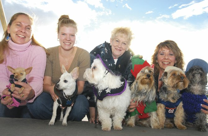 From left, Diana Vanden Hout, with Liza Jane, Sarah Duncan, with Klondike, Debra Maneotis, with Yonnie, and Irene Kitzman with Mitzie, Elvis and LaMia, are the with their dogs dressed up for Halloween.  They work at Victory Motors, and are dressing  up their pets for a Holloween Pet Parade.