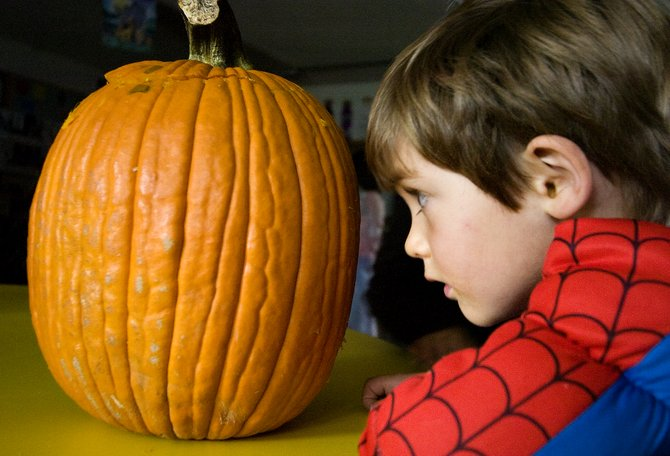 Camp Soda Creek kindergartner Nikolas Keyek gets into a staring contest with a freshly carved jack-o-lantern during the school's annual halloween party in Steamboat Springs on Tuesday.