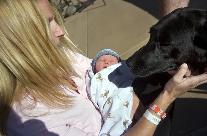 Chica the dog greets his newest playmate, Taj Haradin, center, outside Yampa Valley Medical Center in Steamboat Springs on Friday. Taj's mother, Leslie was discharged from the hospital on Friday after giving birth to Taj on Halloween. YVMC set a record for births in October.
