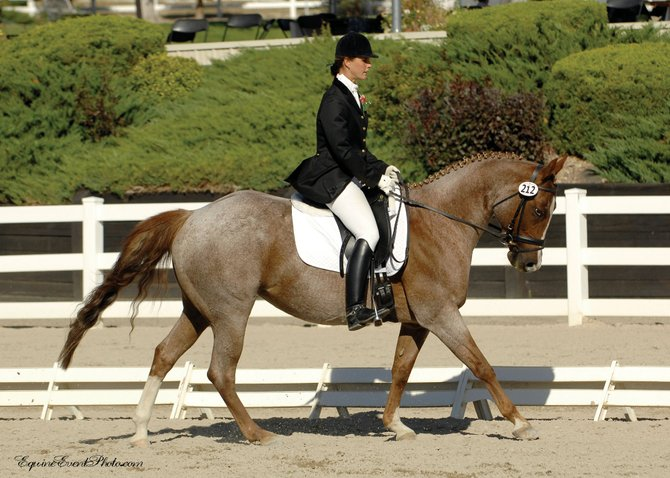 Oak Creek's Beatrice Marienau and her quarter horse, Charmin, seen here at September's Rocky Mountain Dressage Society Region V Dressage Championship, recently won the U.S. Dressage Federation's 2007 All-Breed Second Level Reserve Champion Award in the quarter horse division.