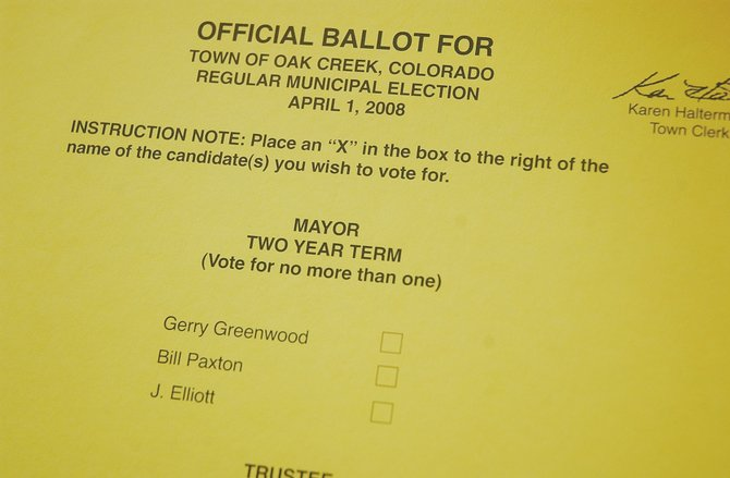 In Tuesday's municipal election, three candidates are vying for mayor and 10 are seeking a trustee seat on the Town Board.