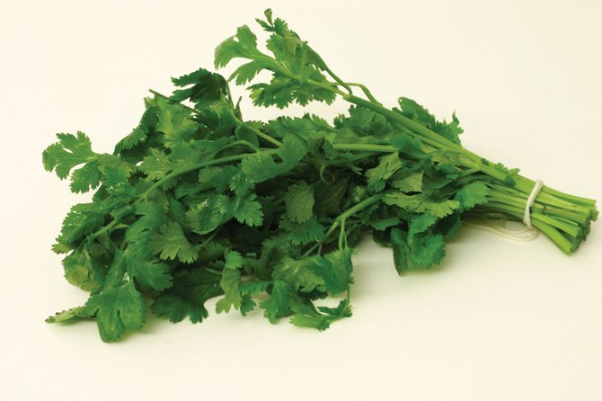 Coriander has been grown as a medicinal and culinary herb for at least 3,000 years.