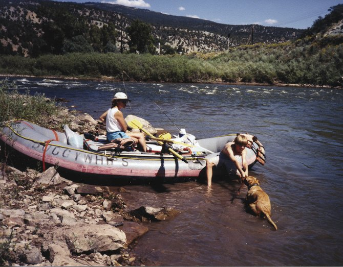 Buck the Wonder Dog loved rivers and streams. Here, he retrieves a stick from the Colorado River downstream from State Bridge in September 1998.