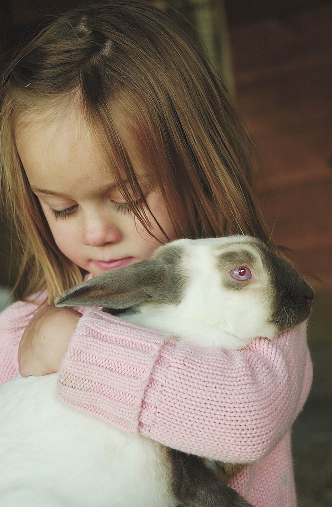 Four-year-old Molly Look holds her bunny, Boy, last month at her North Routt County home. A trip to see her bunny Jan. 17, 2007, in sub-zero temperatures, quickly became a life-threating situation.
