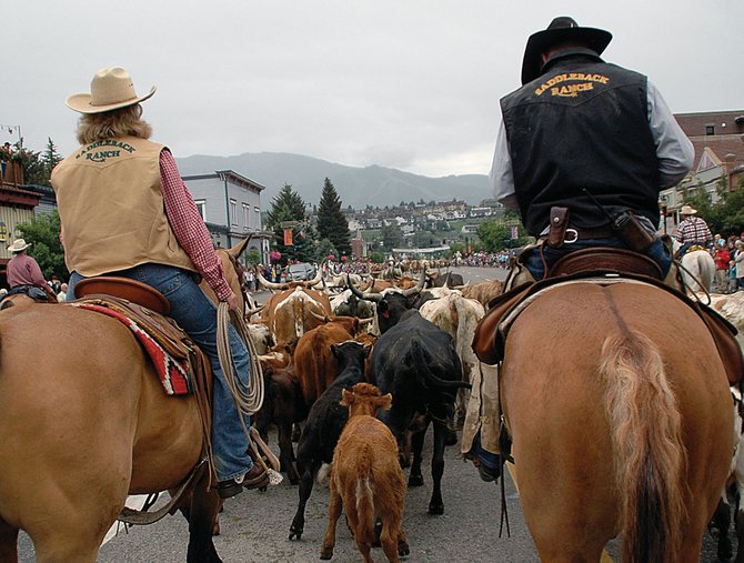 Cowboys keep guard Sunday morning as a herd of cattle was led down Lincoln Avenue as a part of Steamboat's Cowboy Round Up Days. Spectators lined the street and cheered as the herd was led east along the street.