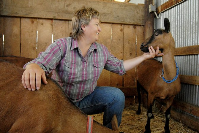 Lorrae Moon, owner of Moonshines Homegrown Produce, sits with a few of her milking goats at her home north of Craig.  Moon sells a variety of food products that come from her home.