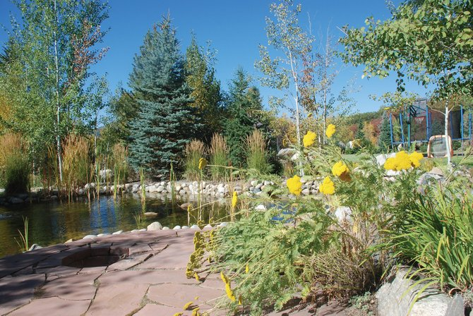 The back yard of the Henry home on Meadowbrook Circle borders Fish Creek. The property features its own recirculating creek with a pair of multi-tiered waterfalls.