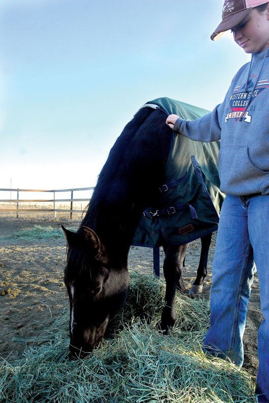 Stevie Brumback pets her horse Buck on a cold Friday morning at her home west of Craig. With winter weather approaching, horses require extra calories to maintain body temperature in the cold. A blanket also can be used to keep your horse warm.
