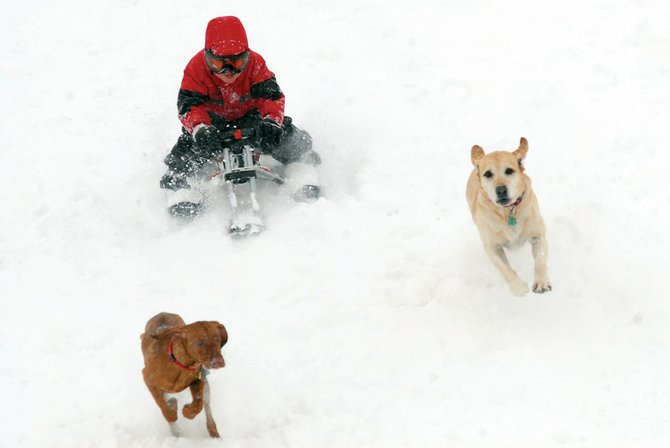 Ryan Peck, 4, sleds down the hill in front of Moffat County High School with dogs Mori, left, and Maya in tow.