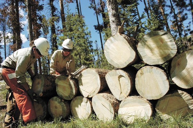 Rocky Mountain Youth Corps. crew members Sarah Yardley, left, and Cassie Moreschi stack logs during summer 2008 at Seedhouse Campground in North Routt County. RMYC is receiving $238,400 in federal stimulus money for hazardous tree removal projects.