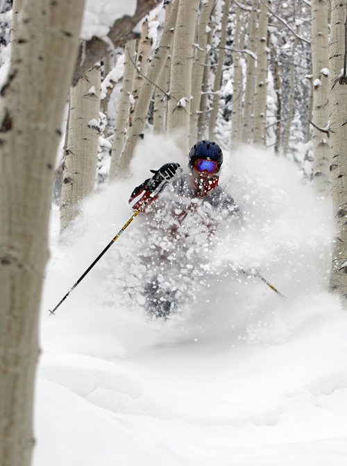 An unidentified skier blasts through powder and aspens Wednesday morning at the Steamboat Ski Area.