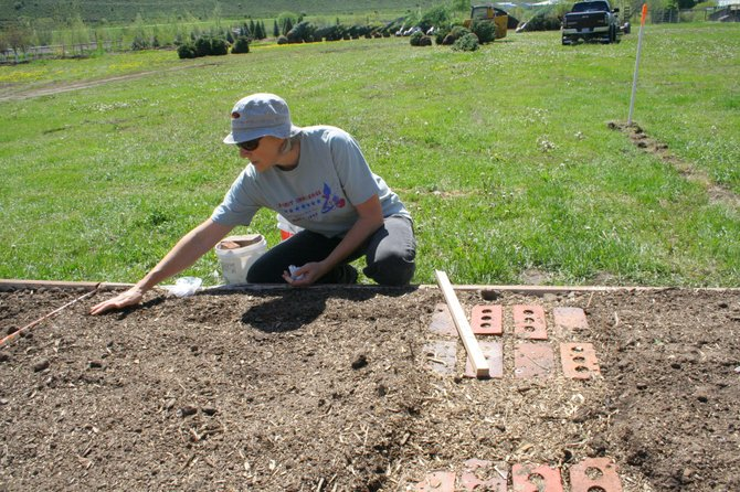 Cindie Anderson plants beet seeds in her garden plot at South Routt Nursery. The nursery is hosting a community garden this year as more residents begin to grow their own vegetables.