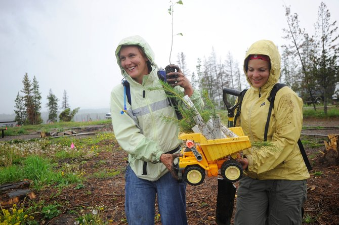 Rio Grande Mexican Restaurant employees Krissy Olick, left, and Ashley Schoomaker carry saplings Friday to an area where they will be planted at Steamboat Lake. They were two of about 100 people planting trees in a campground that had been cleared of beetle-killed lodgepole pine trees.