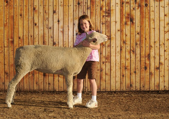 Seven-year-old Kayla Wille won the supreme grand champion honor with this ewe lamb at a county fair last weekend in Bowman, N.D.