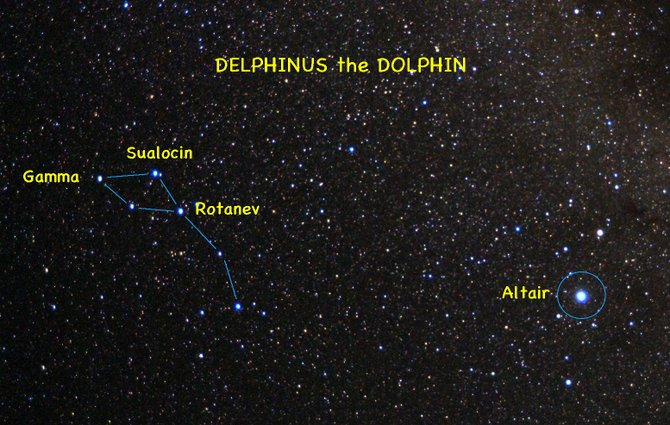 Delphinus the Dolphin can best be spotted at about 10 p.m. in the southeastern sky.