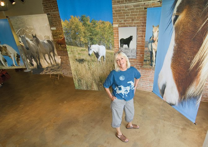 Photographer Judy Jones is surrounded by images of mustangs in their natural setting. Jones, who is featured this month at the Artists&#39; Gallery of Steamboat, printed most of her work on a satiny material for this showing.