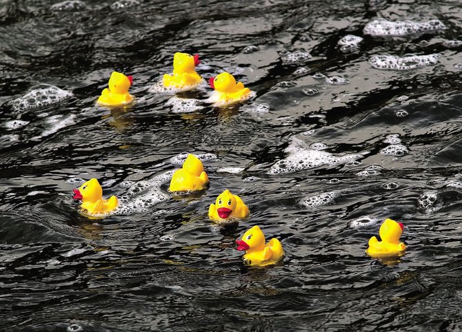 About 2,000 rubber duckies will make their way down the Yampa River on Saturday to help raise money for the Yampa Valley Medical Center's Cardiac Care Services.