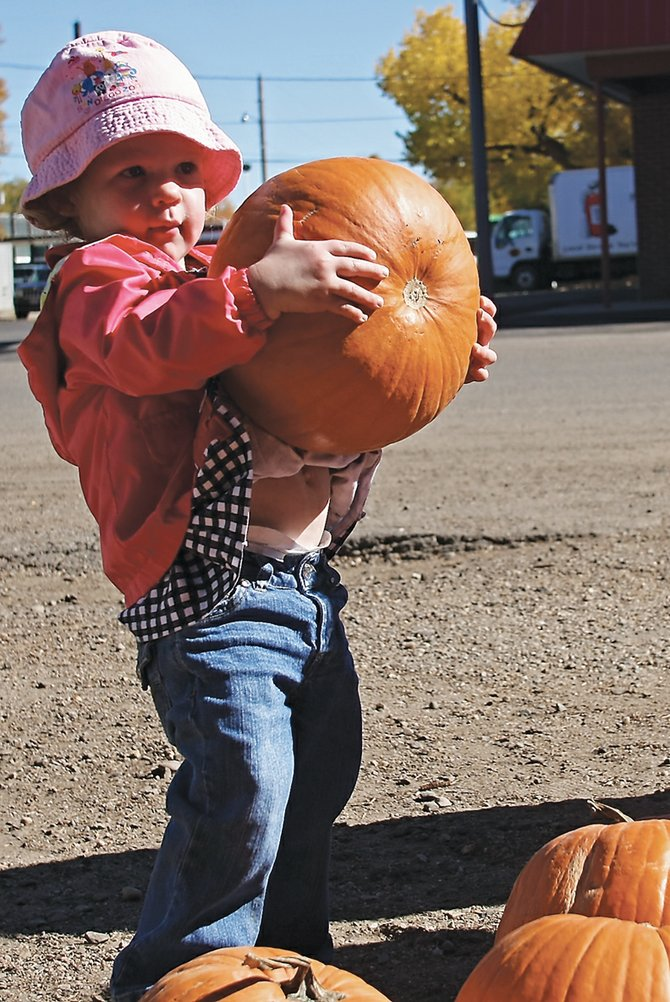 Kayden Grinolds, 2, picks out a free pumpkin on Ranney Street on Saturday morning. Craig resident and businessman Red Cortner brought more than 700 pumpkins into Craig to give away to local youths to decorate for Halloween.