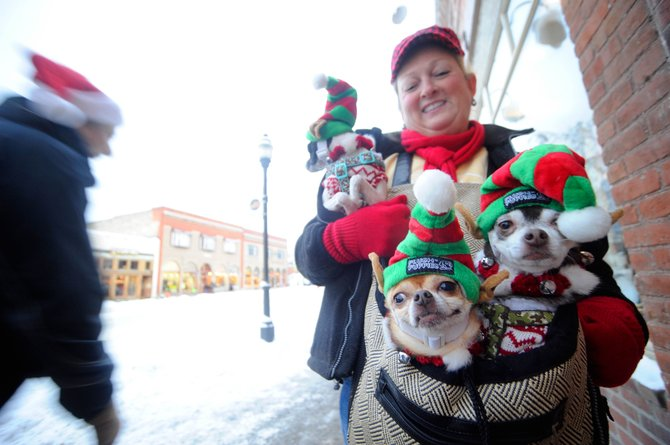 Karen Covillo and her chihuahuas, from left, Panda, Sydnie and Onzlow, were among the participants in the Merry Mainstreet parade downtown Saturday.