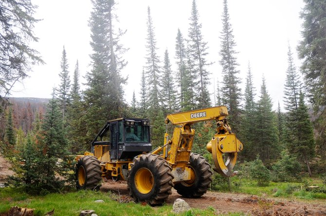 Rogue Resources owner Mike Miller operates a piece of logging machinery in the summer at the Seedhouse Campground in North Routt County.