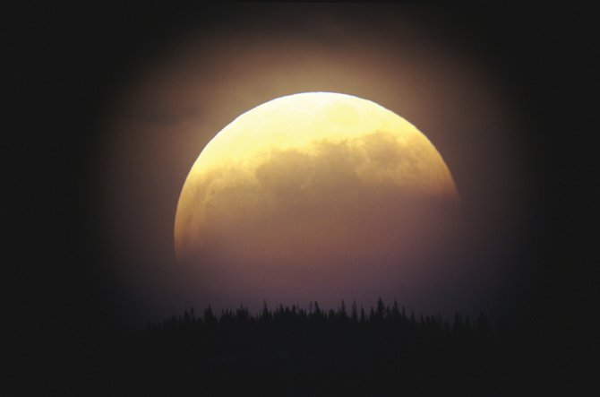 When the full moon rose over the treetops on May 15, 2003, about half of it was eclipsed by the Earth's shadow, as seen in this telescopic image. On June 26, a similar view will greet early risers as the half-eclipsed full moon sets at sunrise. A total eclipse of the moon also will be seen from North America on Dec. 21.