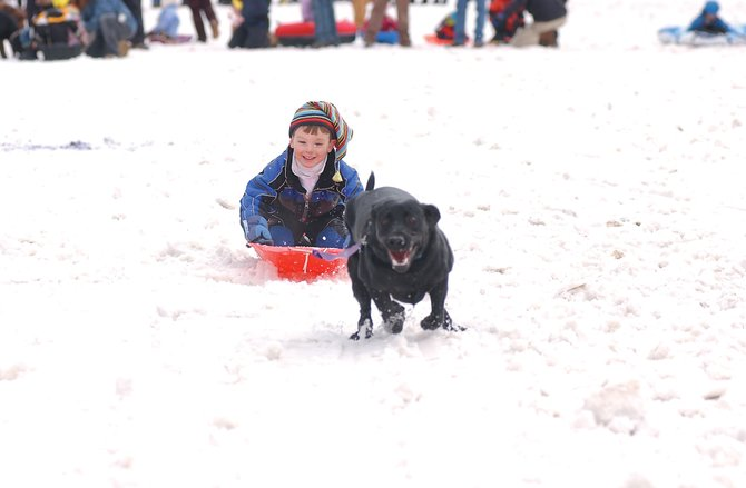 Slade Schmidt is pulled by his dog, Rocky, during the 25-yard Dog and Dad Dash.