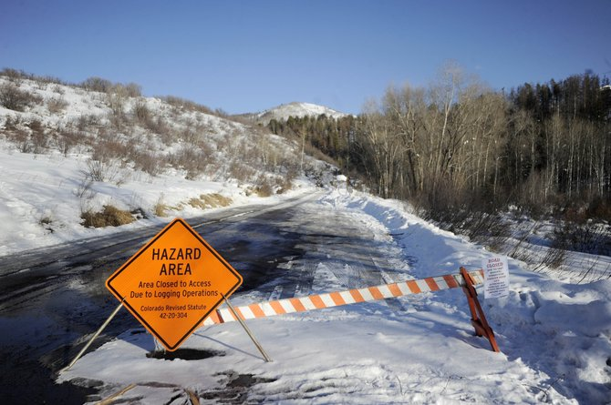 The popular Spring Creek Trail has been closed in recent weeks because of beetle-killed lodgepole pine logging operations. The U.S. Forest Service committed $30 million to Colorado to help with hazard tree removal.