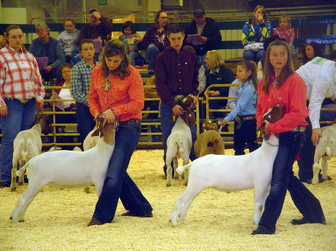 Karissa Maneotis, left, and Alexi Goodnow compete in market class with their goats during the 2010 National Western Stock Show in Denver.