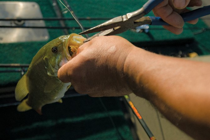 """A fisherman removes a hook from a fish's mouth during last summer's Western Bass Anglers tournament at Elkhead Reservoir. Statewide fishing regulations will be the topic at upcoming """"Angler Roundtable"""" meetings in Steamboat Springs and Meeker."""
