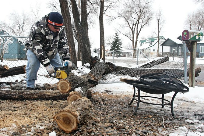 Ron Selbach saws a tree that fell into his friend's driveway Thursday in the 800 block of Tucker Street. A heavy spring snow broke tree limbs and caused power outages throughout the Yampa Valley.