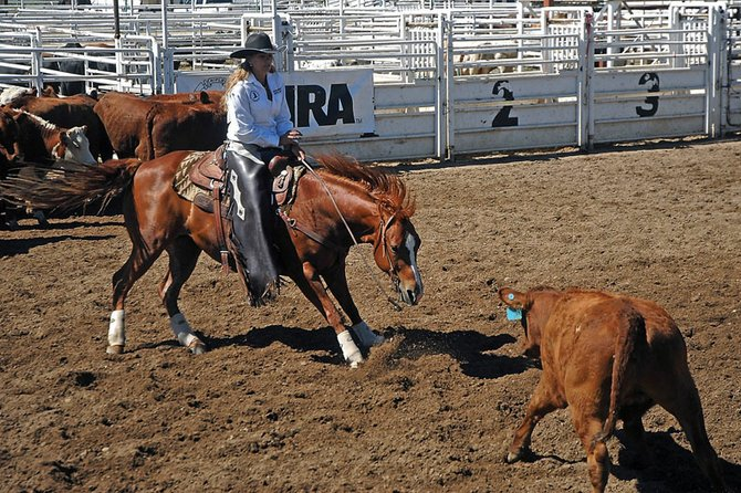 Jackie Henrichs, of Avondale, squares off with a calf during the first go around of the cutting competition of the Colorado State High School Rodeo on Friday at the Moffat County Fairgrounds. Henrichs said she has participated in the sport for four years.