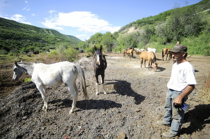 Saw Wisecup, son of Sandy Wisecup, describes the condition of horse pens near mile marker 54 on Colorado Highway 131. Sandy Wisecup recently was charged with 80 counts of animal cruelty after animal control officers found her 72 horses were living in inadequate conditions in the Oak Creek Canyon.