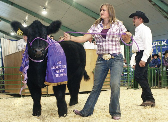 Lacie Coupe, 17, shows her grand champion steer, the 1,387-pound KW, during the 4-H and FFA Junior Livestock Sale on Saturday in the livestock barn at the Moffat County Fairgrounds. Coupe's steer, which she raised for the past year-and-a-half, sold for $4 per pound at the auction, or $5,548.