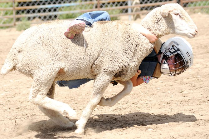 Kayla Rossi clings to her lamb as she competes in the mutton bustin' competition at the Routt County Fair on Sunday.