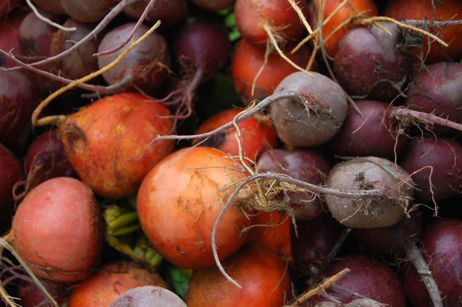 Beets are packed full of vitamins and minerals, and all parts of the vegetable can be eaten.