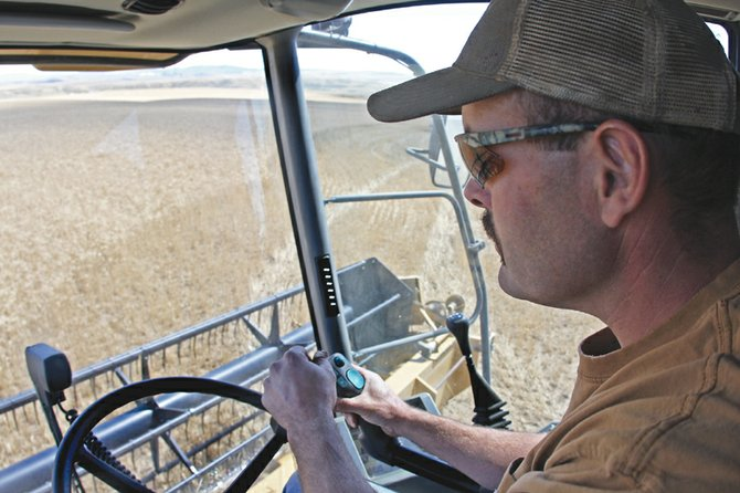 Wayne Counts harvests wheat with a combine that has a capacity of 290 bushels, or about 1,800 pounds, Thursday on Round Bottom Road, southwest of Craig. Counts expects harvests from wheat and hay to be about average compared to other years.