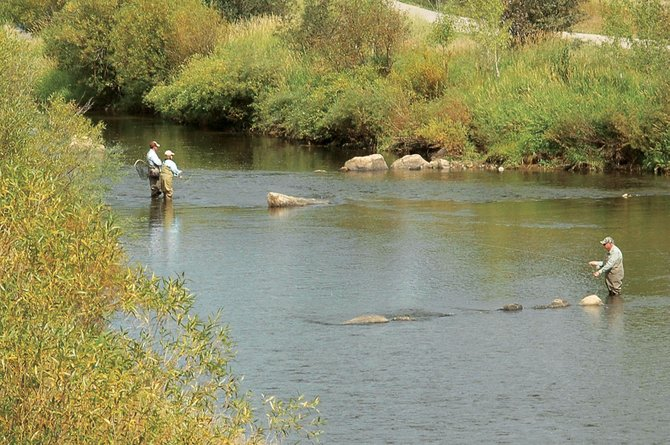 A fishing guide helps a client get the right drift on the Yampa River near Alpine Lumber on Wednesday. The water barely was ankle deep in the same stretch of the river Tuesday. Fluctuating releases from Stagecoach Reservoir and gentle overnight rain caused the river to jump from 60 cubic feet per second to 123 cfs in about 24 hours.