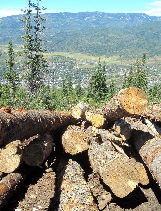Stacked logs sit atop Blackmere Drive on Emerald Mountain above downtown Steamboat Springs.