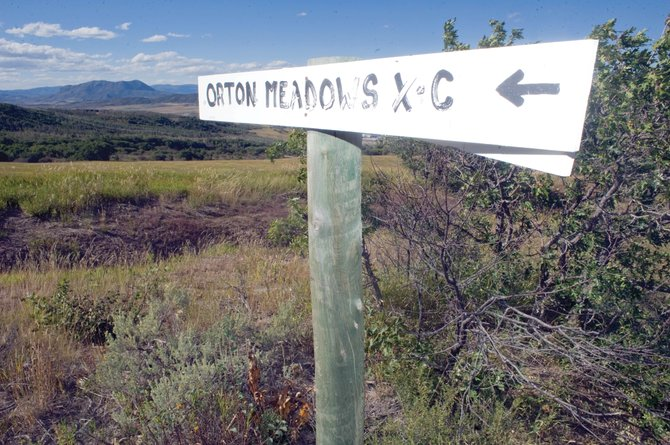 Steamboat Springs City Council members voted, 6-1, Tuesday to approve a revised purchase contract for the 586-acre site owned by Lyman Orton on Emerald Mountain. The purchase remains contingent on a $600,000 grant from Great Outdoors Colorado — a vital part of the funding that could be decided Dec. 8.