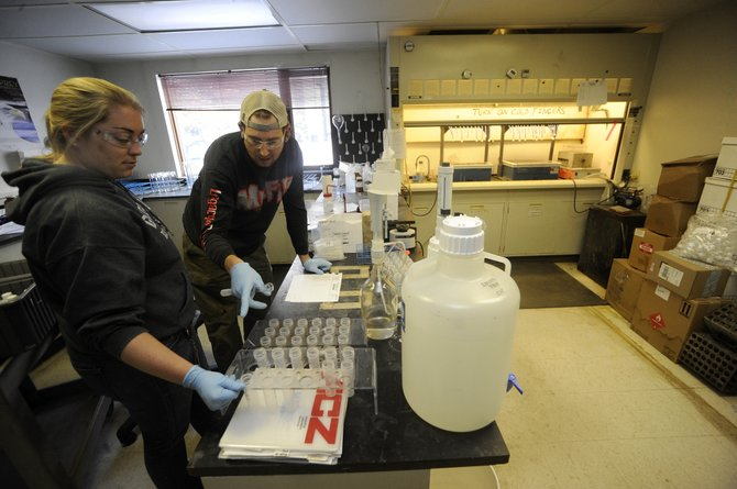 ACZ Laboratories employees Lauren Brown and Mike Brougham prepare samples Wednesday.
