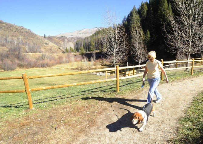 Steamboat Springs resident Lynn Brown walks her dog Waylon on Friday in Spring Creek Park. New leash rules are set for Rita Valentine and Spring Creek parks.
